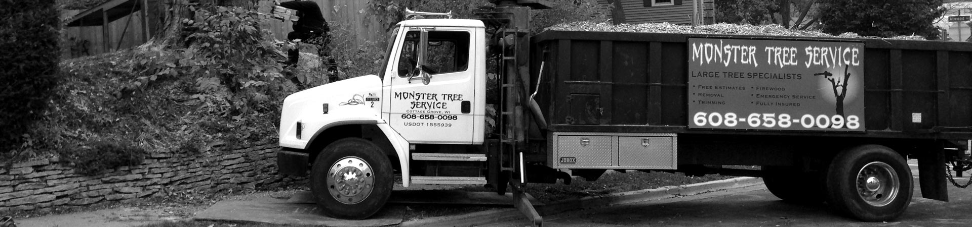 monster-tree-service-5-bw